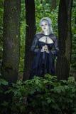 Красивая девушка брошенная в древесинах стоковые фотографии rf