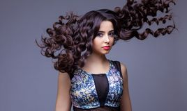 Красивая девушка брюнет с здоровыми длинными волосами Стоковые Изображения RF
