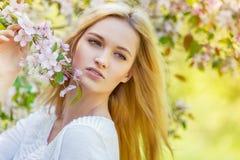 Красивая девушка весны в зацветая дереве Стоковые Изображения RF