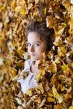 Красивая девушка в желтые листья Стоковые Изображения