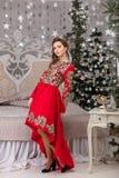 Красивая девушка в красном длинном платье на рождественской елке Стоковое Изображение