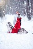Красивая девушка в пальто овчины с собаками Стоковые Изображения RF