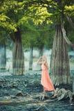 Красивая девушка в розовом платье в лесе Стоковое Фото