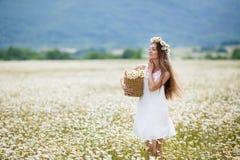 Красивая девушка на поле стоцвета Стоковое Фото