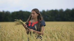 Красивая девушка подростка с ушами пшеницы в пшеничном поле акции видеоматериалы