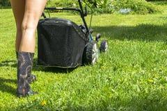 Красивая девушка режет лужайку, кося лужайки, травокосилку на зеленой траве, оборудовании травы косилки, кося инструменте работы  Стоковое Изображение