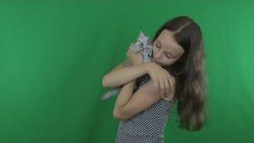 Красивая девушка связывает с створкой Scottish котенка на зеленом видео отснятого видеоматериала запаса экрана сток-видео