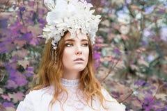 Красивая девушка redhair любит принцесса Стоковые Фотографии RF