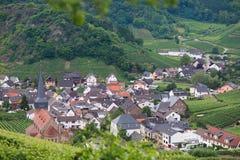 Красивая деревня с дворами вина Стоковая Фотография RF