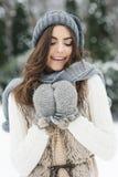 Красивая женщина в зимнем времени стоковые изображения