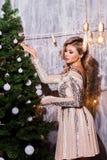 Красивая женщина в интерьере Нового Года одевает рождество моя версия вектора вала портфолио стоковое фото rf