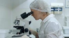 Красивая женщина в лаборатории работая с микроскопом Стоковые Фотографии RF