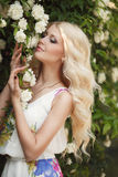 Красивая женщина в парке около роз Буша зацветая стоковое фото
