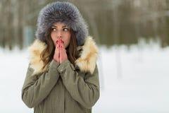 Красивая женщина в пальто и меховой шапке зимы Стоковые Фото