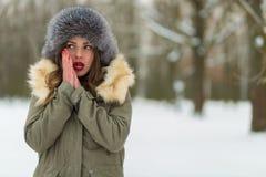 Красивая женщина в пальто и меховой шапке зимы Стоковое Фото