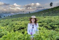 Красивая женщина в положении шляпы на плантации чая стоковые фото