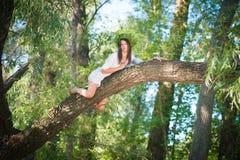 Красивая женщина лежа на дереве в лесе Стоковые Изображения