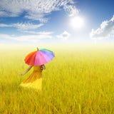 Красивая женщина держа пестротканый зонтик в желтых поле риса и небе облака стоковая фотография rf
