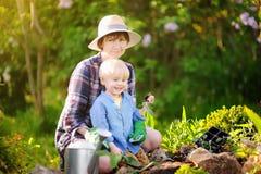 Красивая женщина и ее милый сын засаживая саженцы в кровати в отечественном саде на летнем дне Стоковые Фотографии RF