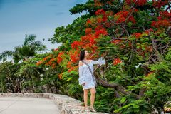 Красивая женщина на белом платье идя самостоятельно на стены окружая колониальный город Cartagena de Indias стоковые фотографии rf