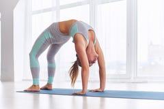 Красивая женщина практикует asana Urdhva Dhanurasana йоги backbend - верхнее представление смычка облицовки на студию йоги Стоковые Изображения