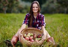 Красивая женщина сидя около корзины яблок Стоковые Изображения RF