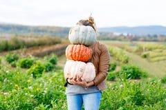 Красивая женщина с 3 огромными тыквами на ферме Стоковые Изображения