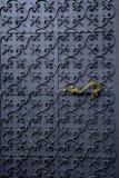 Красивая железная дверь Стоковое Изображение RF