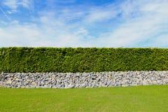 Красивая загородка дерева, зеленое поле и камень с голубым небом и clo Стоковое Изображение RF