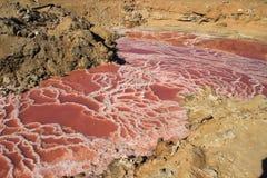 Красивая замороженная вода конусов очень соленая яркая розовая с белыми кристаллами соли стоковые изображения