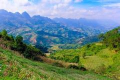 Красивая зеленая гора и голубое небо стоковое фото rf