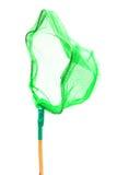 Красивая зеленая сеть бабочки Стоковая Фотография