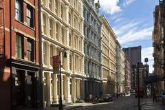 Красивая зеленая улица стоковая фотография