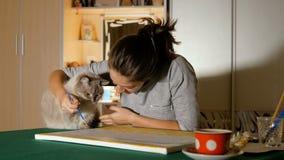 Красивая игра девушки с ее любимчиком Молодой художник пробует научить, что кот нарисовал Предприниматели и их смешные животные сток-видео