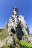 Красивая известковая скала в польском юрском нагорье Кракова-Czestochowa гористой местности, Польше стоковые фотографии rf
