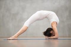 Красивая йога: Представление моста локтя Стоковое Изображение