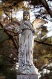 Красивая каменная статуя ангела в старом кладбище Стоковая Фотография RF
