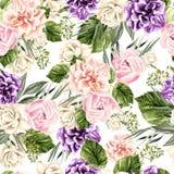 Красивая картина акварели с белыми розами и розовым пионом Стоковое фото RF