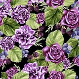 Красивая картина акварели с цветками подняла и ежевика, евкалипт выходит Стоковые Фото