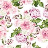 Красивая картина акварели с цветками подняла и пион Стоковые Изображения RF