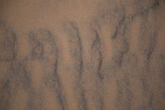 Красивая картина песка моря на пляже Текстура песка берега Балтийского моря Стоковая Фотография