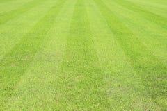 Красивая картина свежей зеленой травы для спорта футбола Стоковая Фотография RF