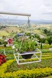 Красивая корзина смертной казни через повешение цветка Стоковые Изображения RF