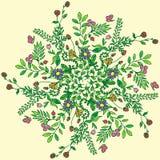 Красивая круговая флористическая безшовная картина Орнаментальная круглая картина шнурка, иллюстрация вектора Стоковые Изображения RF