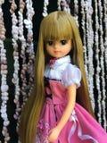 Красивая кукла LICCA стоковое изображение rf