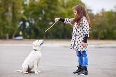 Красивая маленькая девочка играя с собакой outdoors Концепция любимчика Стоковые Фотографии RF