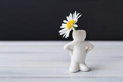 Красивая маргаритка в малой вазе, форме человека Стоковые Фотографии RF
