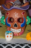Красивая марионетка черепа цвета Стоковые Изображения RF