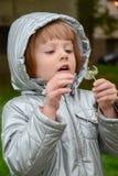 Красивая маленькая девочка держа одуванчик Стоковые Фото