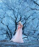 Красивая маленькая девочка идет одно среди снежных деревьев стоковое изображение rf
